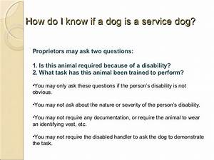letter for service dog hvac cover letter sample hvac With how to write a letter for a service dog