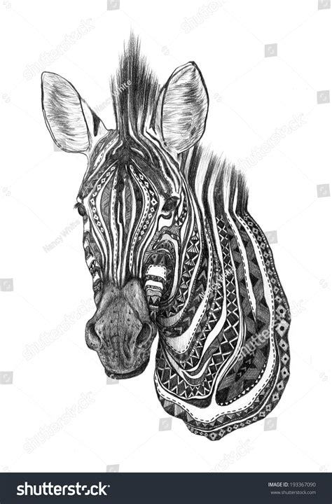 Creative Zebra Pencil Sketch Stock Illustration 193367090