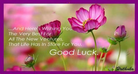good luck    ventures  good luck ecards