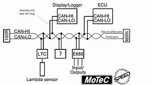 Canbus Wiring Diagram