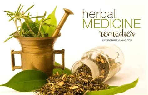 herbal medicine remedies  spot green living