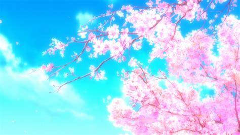 anime nature sakura tree cherry blossom sakura sakura