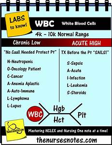 Cbc Complete Blood Count Wbc Platelets Hgb Hct Bmp Chem7