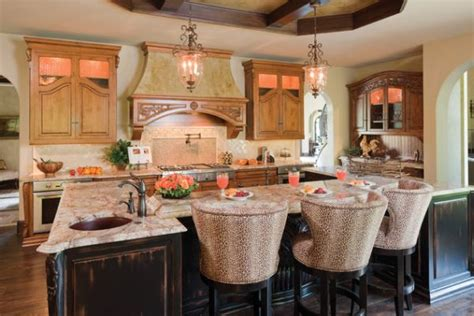 Leopard Print Kitchen  Home Design And Decor Reviews