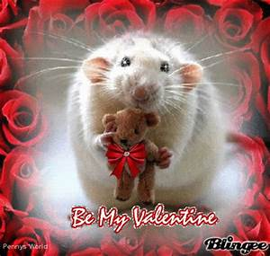 happy valentines day, lets mouse around Picture #106473976 ...