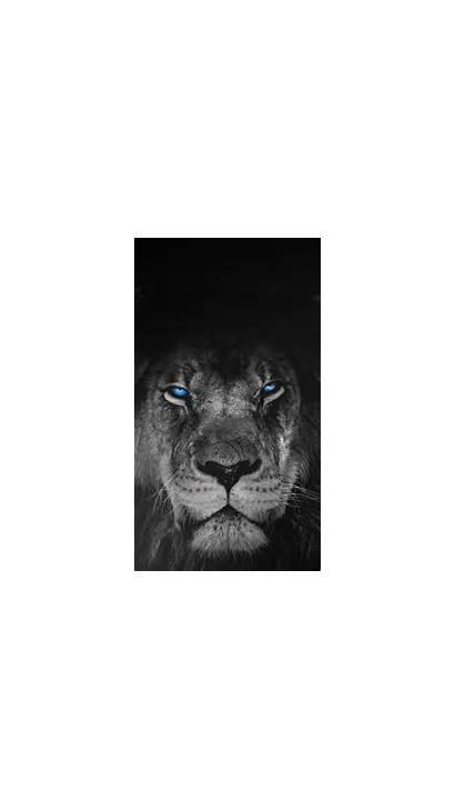 Sense Iphone Predator Hdwallpaperfx Animal April