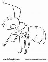 Ant Coloring Preschool Worksheet Hormigas Colorear Dibujos Printable Ants Hormiga Worksheets Fact Activities Animales Pintar Hill Clip sketch template