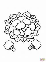 Cauliflower Coloring Pages Clipart Printable Vegetables Drawing Supercoloring Recommended sketch template