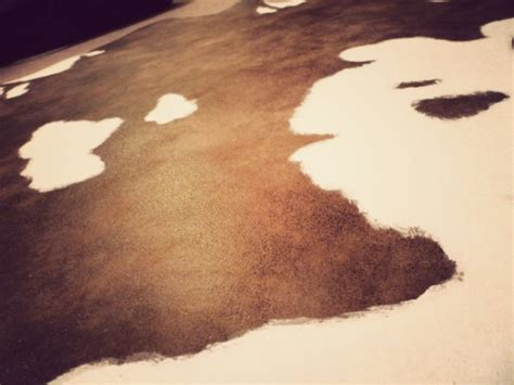 Faux Cowhide Fabric For Upholstery by Cruelty Free Floor Budget Friendly Diy Faux Cowhide Rug