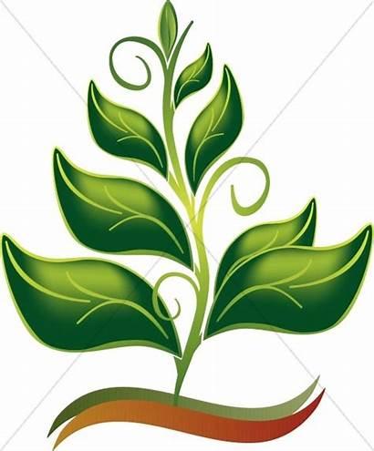 Nature Clip Clipart Spiritual Spirit Growing Growth
