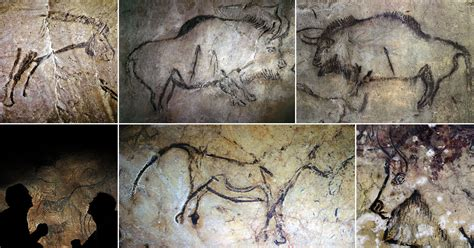 palaeolithic cave paintings   niaux cave  france