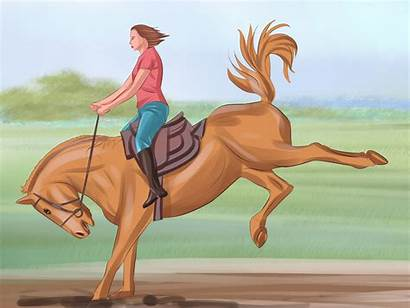 Horse Tame Pony Wikihow Step Version Steps