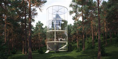 treehouses     tree
