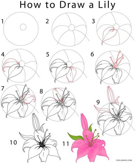 25 best ideas about flower drawing tutorials on