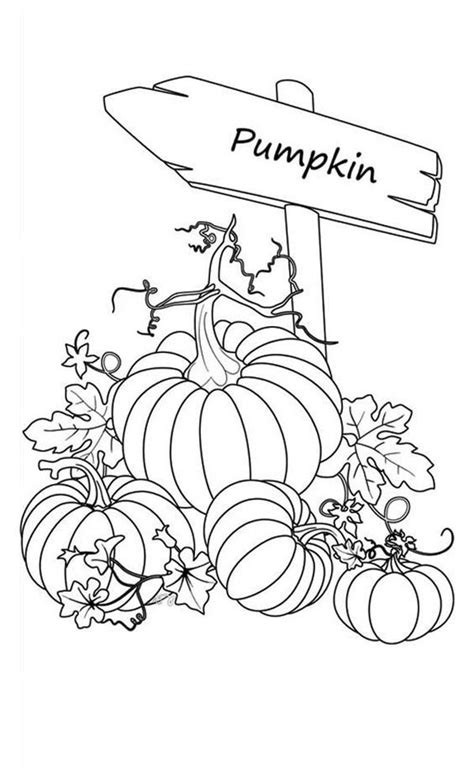 gci outdoor everywhere chair canada 28 pumpkin patch coloring pictures pumpkin patch