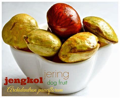 indonesian medan food rendang jengkol curried dog fruit