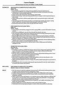 marketing manager china resume samples velvet jobs With chinese resume template download