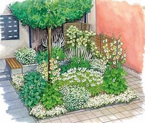 Pflanzen Für Den Vorgarten : 328 besten gartengestaltung bilder auf pinterest ~ Michelbontemps.com Haus und Dekorationen