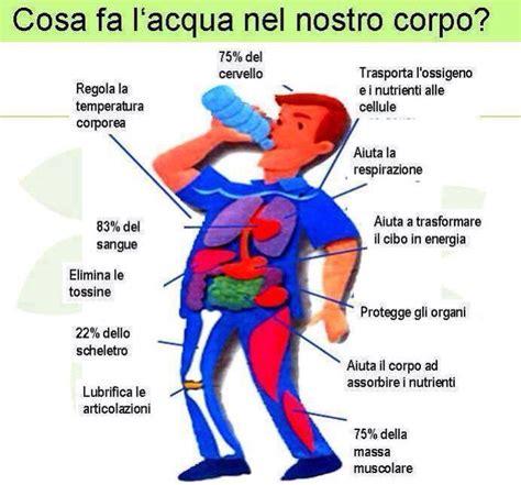 Due Litri Di Acqua Quanti Bicchieri Sono by Acqua Potabile In Costa Rica