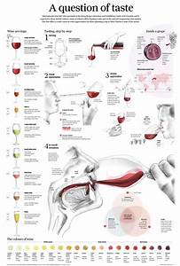 Learn About Wine  11 Easy Wine Charts For Visual Reference