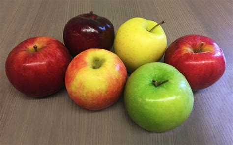 Common Apple Varieties for Snacking, Baking, and More ...