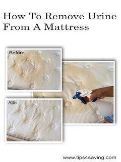 how to remove urine from mattress how to remove urine from a mattress