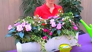 Blumenkästen Bepflanzen Sonnig : bellandris balkonk sten f r sonne und schatten bepflanzen youtube ~ Frokenaadalensverden.com Haus und Dekorationen