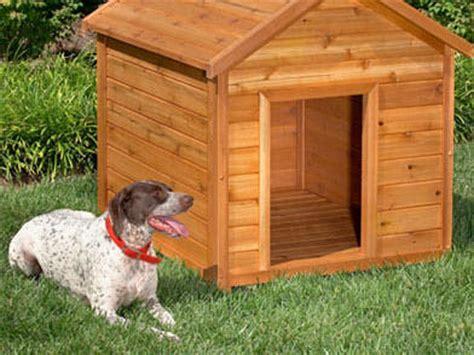 wood dog kennel plans    build  amazing diy