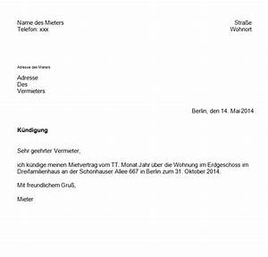 Kündigung Einer Wohnung : k ndigung eines mietvertrages mit vorlage ganz einfach giga ~ Yasmunasinghe.com Haus und Dekorationen