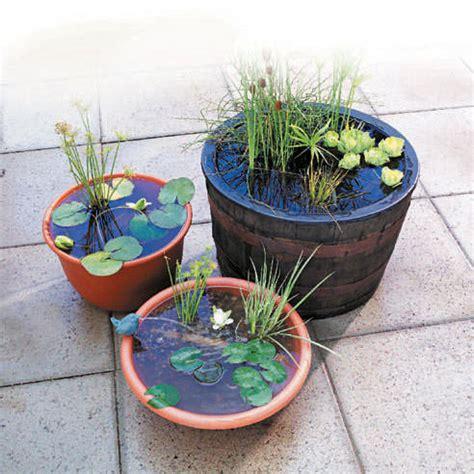 How To Make A Container Water Garden  The Garden Glove
