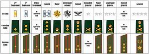 A guide to military officer ranks | anapophist