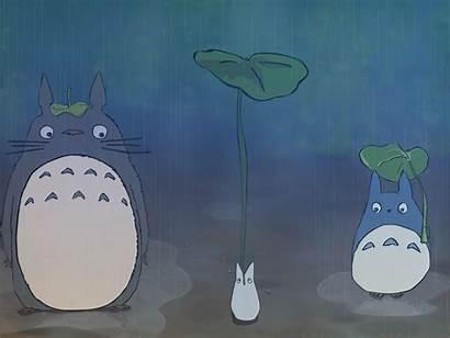 Totoro Ghibli Neighbor Studio Desktop Wallpapers Mobile
