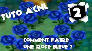 Comment Faire Secher Une Rose : tuto 2 acnl comment faire une rose bleue vid o ~ Melissatoandfro.com Idées de Décoration