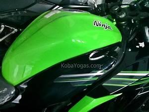 Appearance Review  Kawasaki Ninja Rr Mono 250 Cc