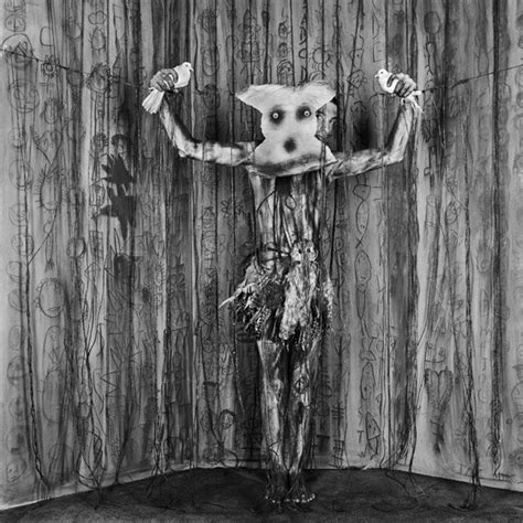 asylum   birds roger ballen photography