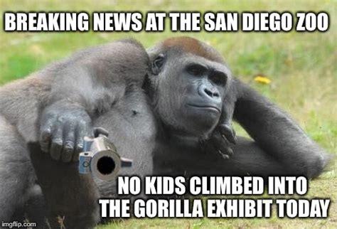 Gorilla Meme - funny gorilla meme