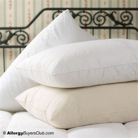 shop allergy bedding hypoallergenic bedding