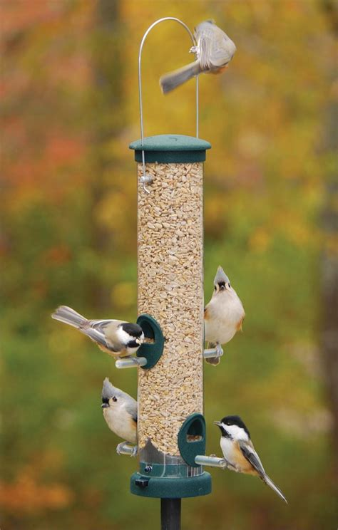 aspects quick clean seed feeder as424 tube bird feeders