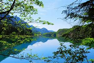 Nature, Landscape, Trees, Lake, Mountain, Alps, Forest
