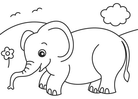 coloring pages jungle realistic jungle animal coloring