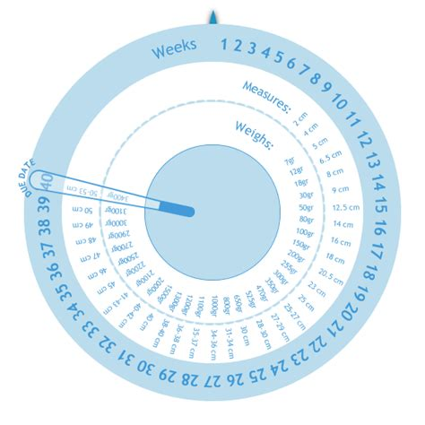 pregnancy management gestogram pregnancy calculator