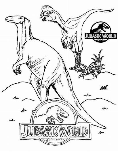 Jurassic Coloring Pages Printable