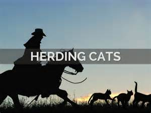 herding cats herding cats responsive communication for project management