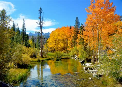 eastern sierra  full peak   california fall color