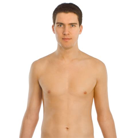 male body file front smiling png wikimedia commons