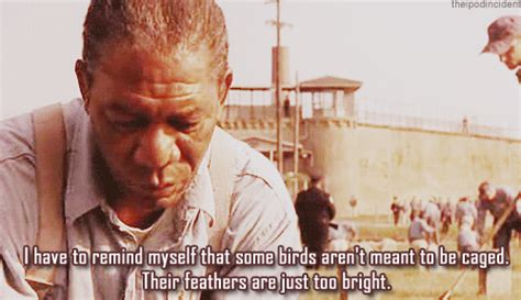 andy dufresne  tumblr