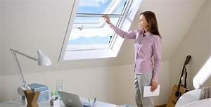 Mückenschutz Für Türen : funktionaler m ckenschutz rollo f r dachfenster insektenschutz f r fenster und t ren ~ Cokemachineaccidents.com Haus und Dekorationen