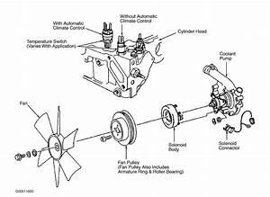 Fan Clutch Exploded Diagram