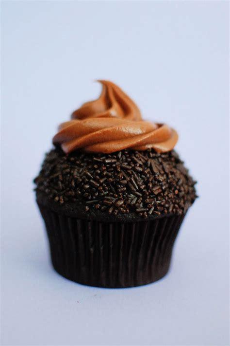 chocolate cupcakes chocolate chocolate chocolate chocolate chocolate cupcakes aka quintuple chocolate cupcakes