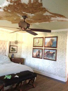 How To Care For A Cowhide Rug by How To Care For A Cowhide Rug Home Decor